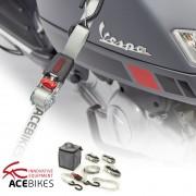 Acebikes Ratchet Kit Scooter Zurrgurte SET Roller / Scooter